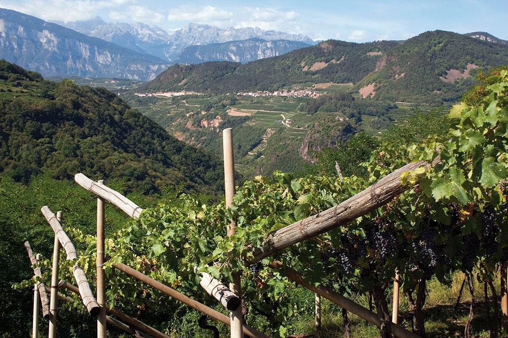 Trentino Val di Non