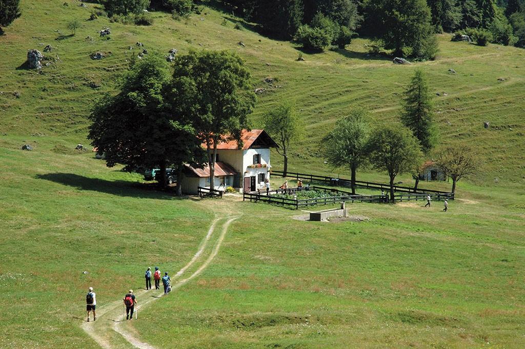 Cembartal im Trentino