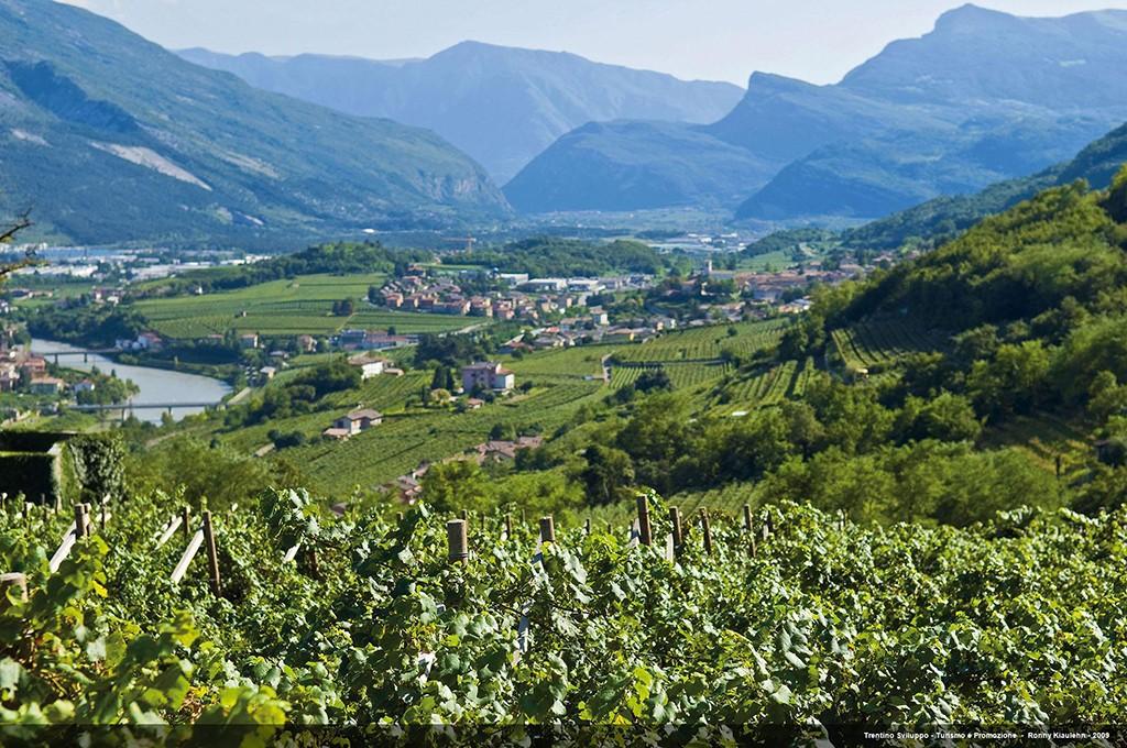 Blick auf Rovereto im Trentino